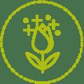 Facilia Icon Ohne schädliche Pestizide hellgrün